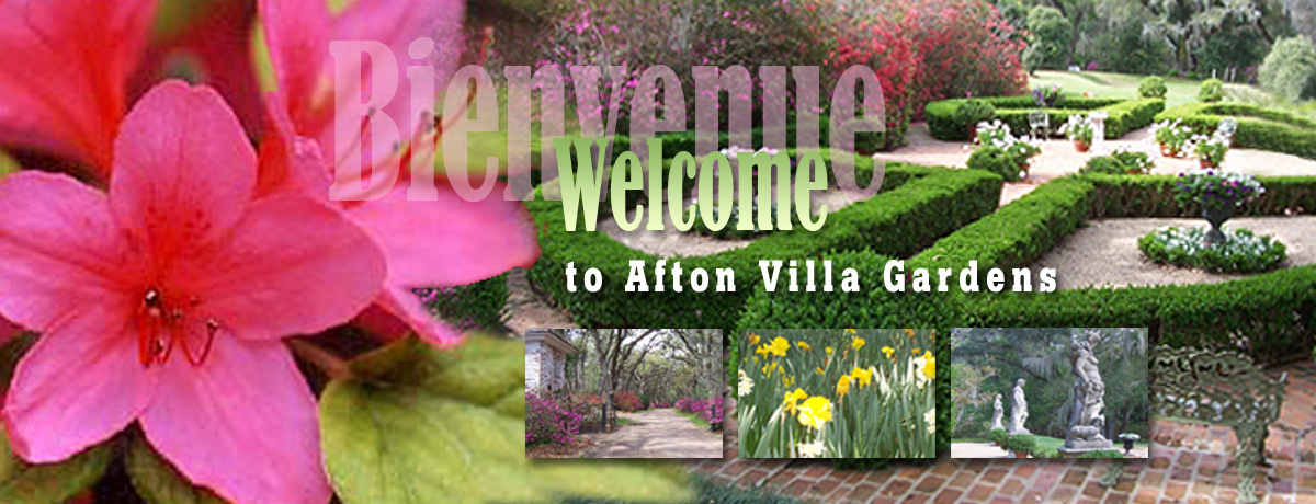 Welcome to Afton Villa Gardens